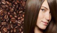 صبغة الكاكاو والبروكسيد