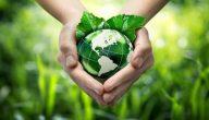 موضوع عن أهمية البيئة